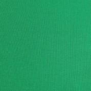 Punto acanalado COTON verde kiwi