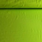 Punto liso verde lima vivo